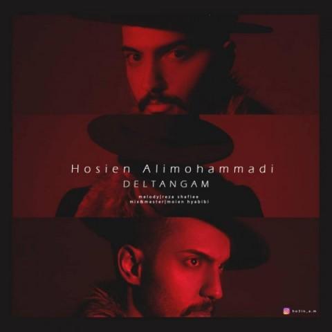 دانلود آهنگ جدید حسین علی محمدی دلتنگم