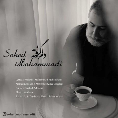 دانلود آهنگ جدید سهیل محمدی دلم گرفته