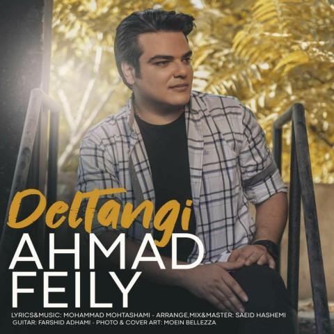 دانلود آهنگ جدید احمد فیلی دلتنگی